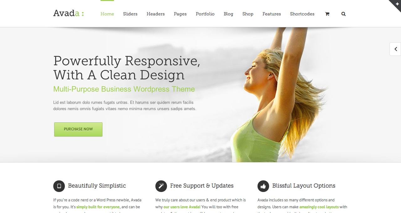 Avada Themes - Best Premium WordPress Themes 2013